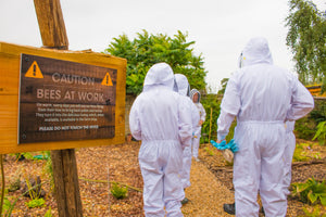 'Beekeeping for Beginners' 1 Day Workshop