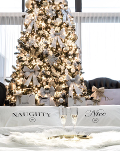 NAUGHTY & NICE PILLOWCASE SET