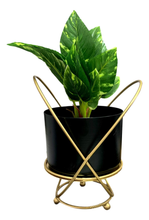 Criss Cross Planter-Planter-deckout.in