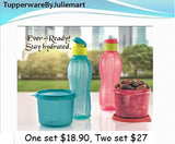 Tupperware Eco Bottle(500ml) and Container(550ml) Bundle