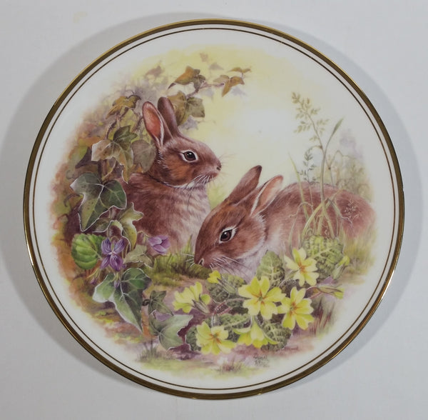 "Vintage Royal Vale ""European Wild Rabbit"" Bunny Hare Bone China Collectible Wildlife Plate"