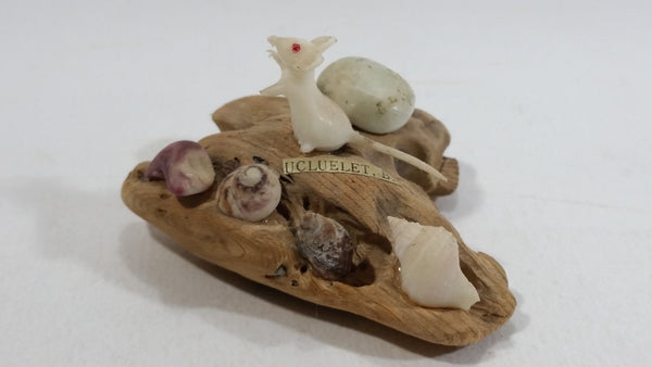 Ucluelet, B.C. Vancouver Island Petrified Wood with Sea Shells and Albino Mouse Ornament Souvenir Travel Collectible