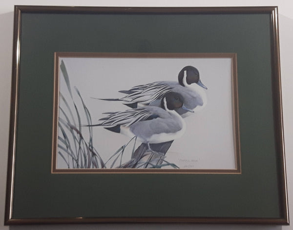 "Ducks Unlimited Artist Art Lamay ""Pintail Pals"" 11"" x 13"" Framed Wildlife Art Print"