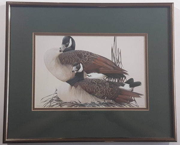 "Ducks Unlimited Artist Art Lamay ""True Companions"" 11"" x 13"" Framed Wildlife Art Print"