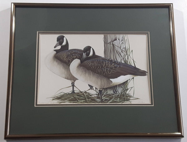 "Ducks Unlimited Artist Art Lamay ""Lifetime Partners"" 11"" x 13"" Framed Wildlife Art Print"