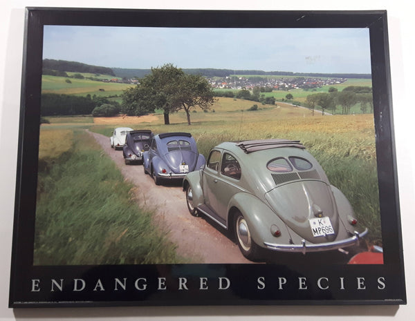 "Volkswagen Beetle ""Endangered Species"" Hardboard Wood Plaque with Yellow and Red Bead Tail Lights 16"" x 20"""