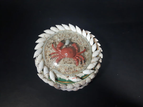 Vintage Mazatlan, Mexico Real Shell Plastic Crab Under Dome Keepsake Trinket Box - Treasure Valley Antiques & Collectibles