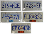 License Plate Collection Lot LARISSA'S DEALS