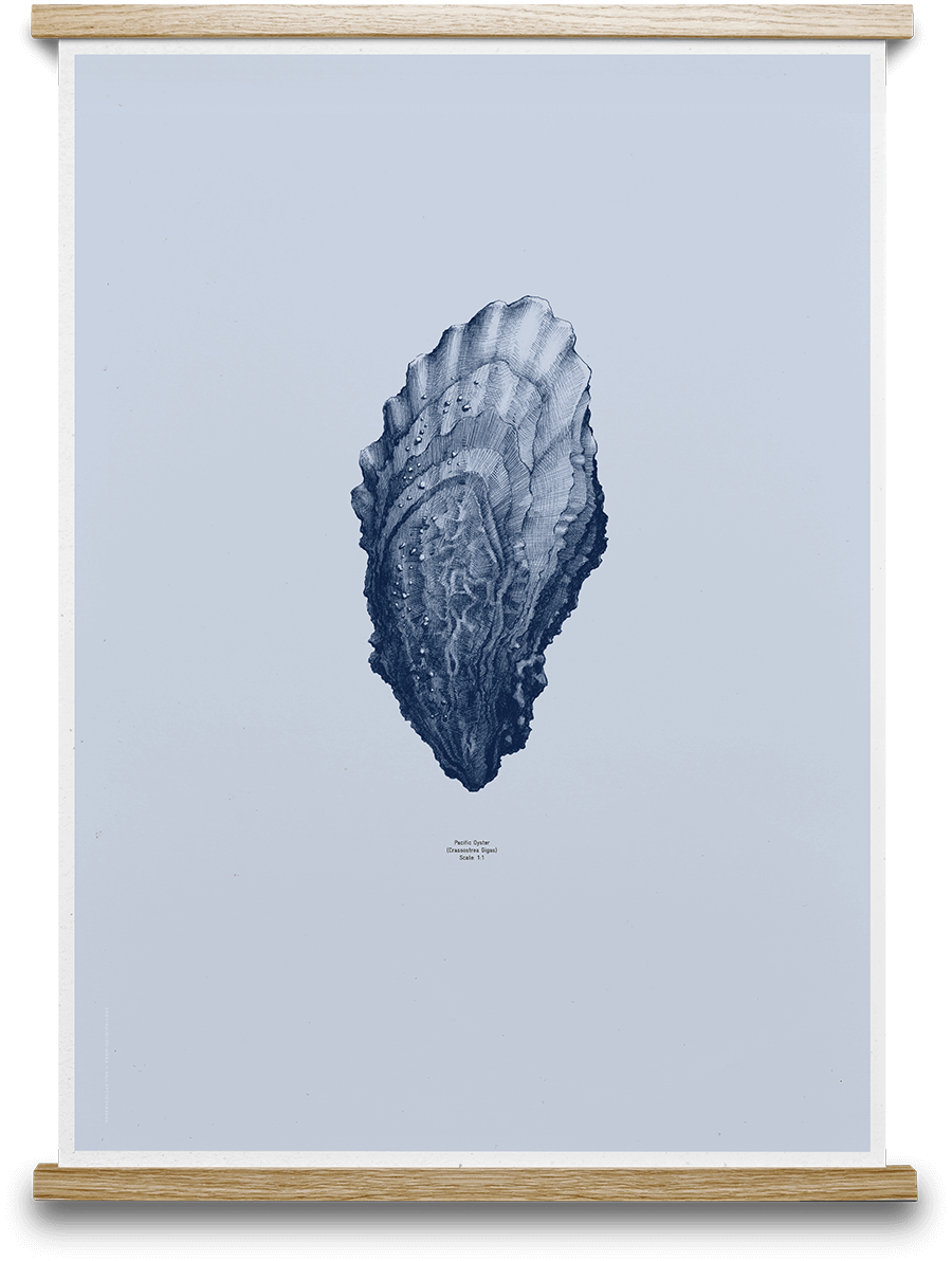 Oyster Form Us With Love - Ocean Blue 50 x 70 cm