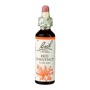 Red Chestnut (Over Anxiety for Loved Ones)
