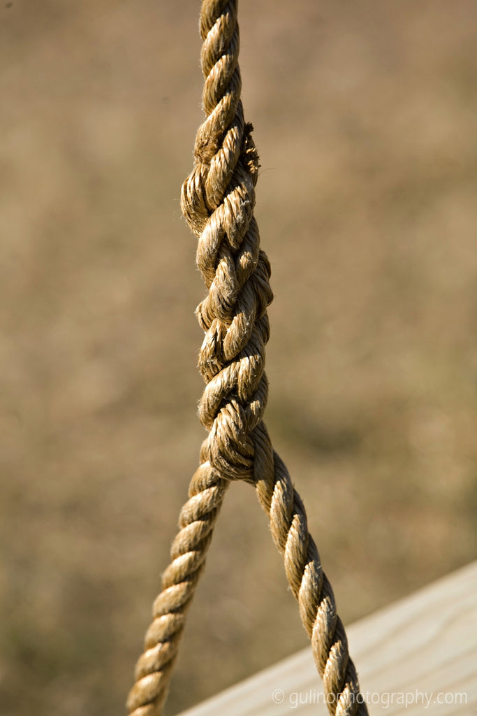 Rope Detail of Premier Wood Tree Swing