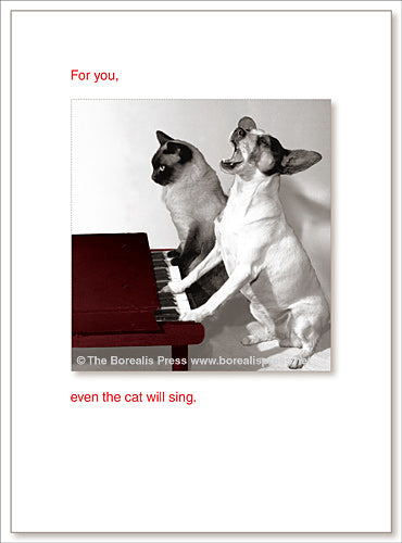 Birthday;  For you, even the cat will sing.