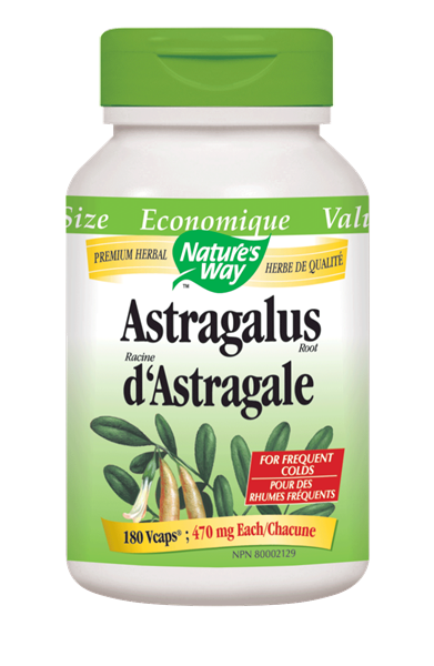 Nature's Way Astragalus Root - 180 Count