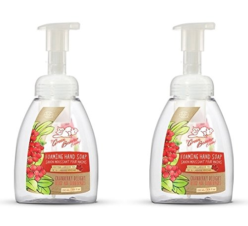 Green Beaver Cranberry Delight Foaming Hand Soap (Pack of 2) with Certified Organic Lavender Water, Carrot Seed Oil and , Vegan and Cruelty-free, 8.4 oz