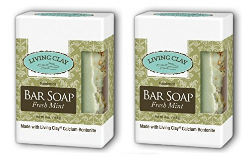 Living Clay Fresh Mint Bar Soap (Pack of 2) with Natural Calcium Bentonite Clay, Sea Salt, Herbs, Olive Oil, Palm Oil, Coconut Oil and other Essential Oils, 4 oz