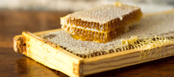 Natural, Raw Honeycomb