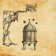 A sketch of a beehive from the 18th century