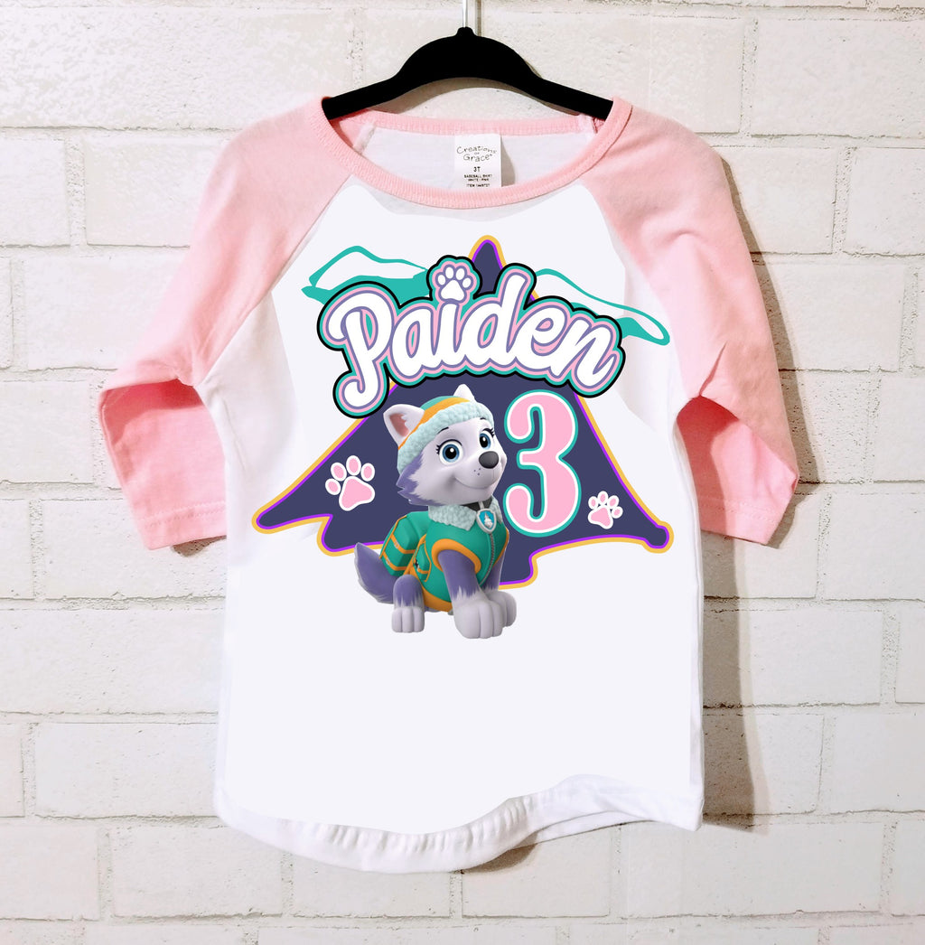 Skye or Everest Pink Raglan Birthday Tshirt, Sizes 2T - 5T