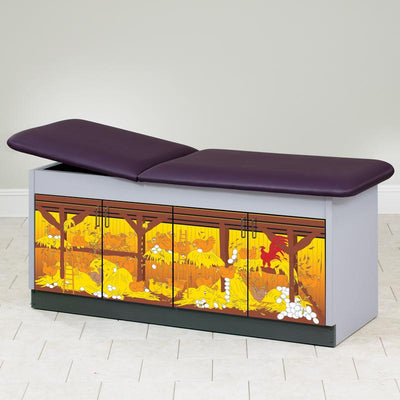Wings 'N Things Discovery Pediatric Treatment Table by Clinton Industries - MedStockUSA.com