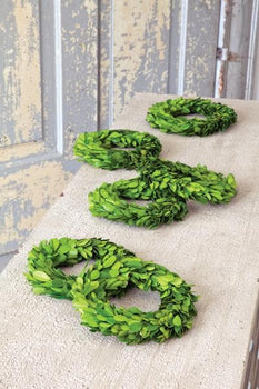 Mini Perserved Boxwood Wreaths (S/6)