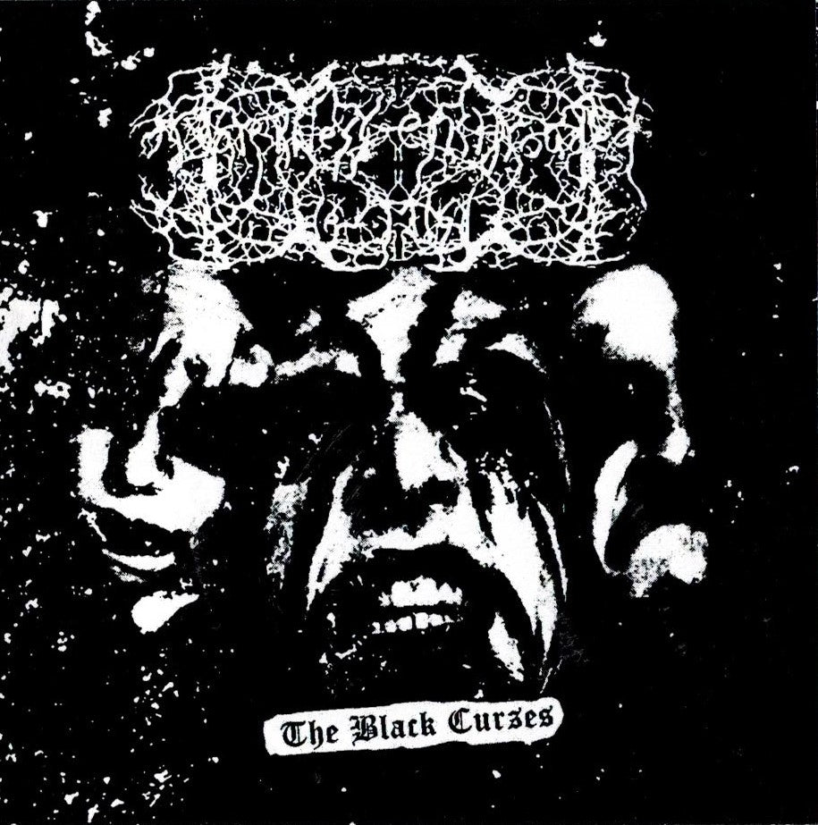 Darkness Enshrouded the Mist - The Black Curses CD