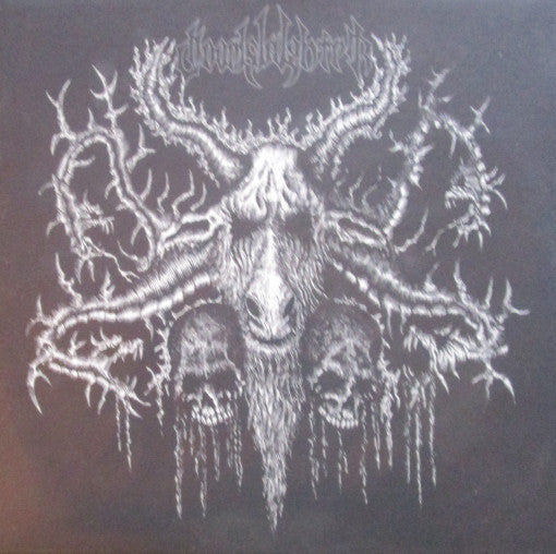 Doomslaughter – Folowers Of The Unholy Cult MLP