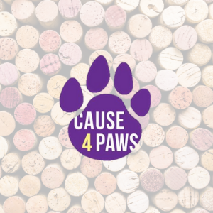 Cause 4 Paws Mixed Case