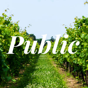 Public Winery Tour