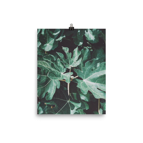 The Stockshirt Leaves 6 Photo paper poster