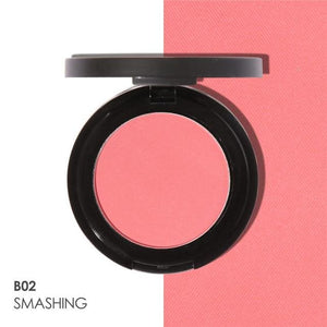 Matte Professional Blush (11 Colors) B02 Highlighter