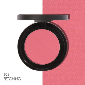 Matte Professional Blush (11 Colors) B05 Highlighter