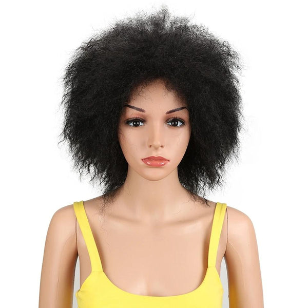 Wig Queen Afro (2 Colors)