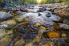 """North Fork of the Little Laramie River, Centennial, Wyoming"" Fine Art Photographic Print - Seneca Creek Studios"