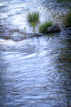 """Tranquility in a Stream"" Fine Art Photographic Nature and Landscape Prints by Allison Pluda 