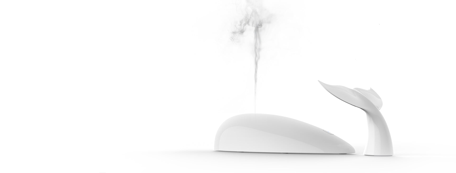 Whale Aroma diffuser