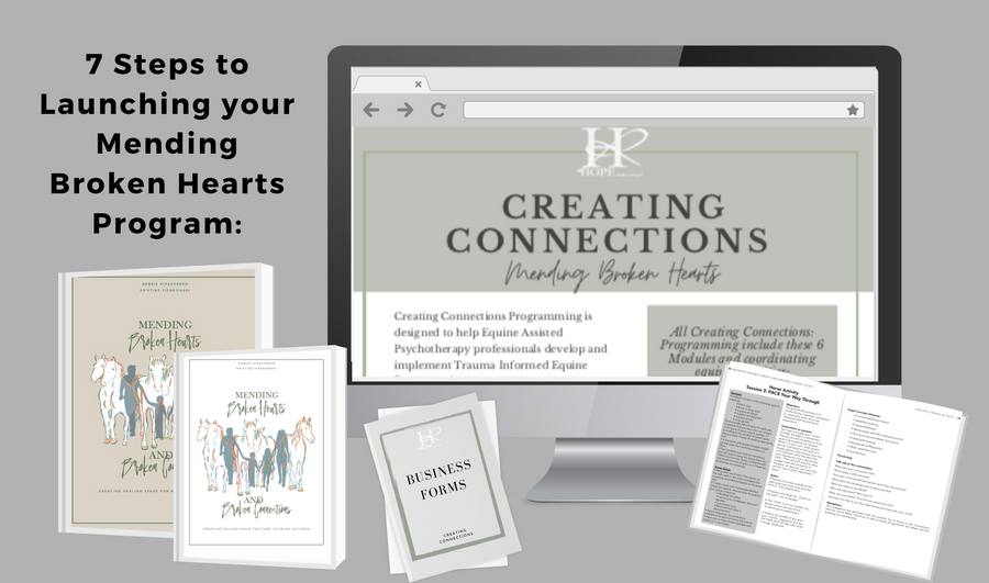 Level 2 Creating Connections Online Course 7 Steps to Getting Your Mending Broken Hearts Program off the Ground