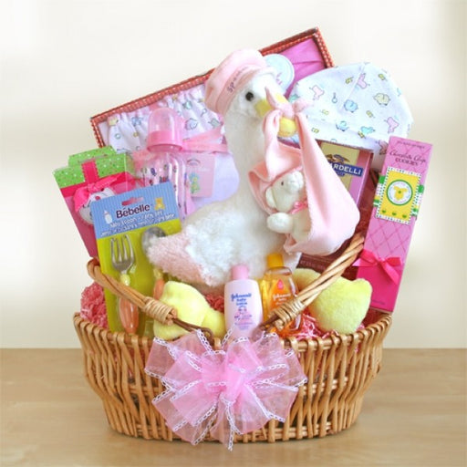 Special Stork Delivery Baby Girl Basket - Chocolate.org