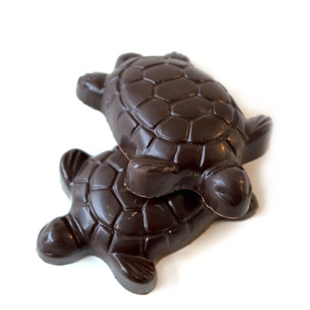 Caramel Turtle in Milk or Dark Chocolate, NUT FREE / ALL NATURAL / 12 count - Chocolate.org