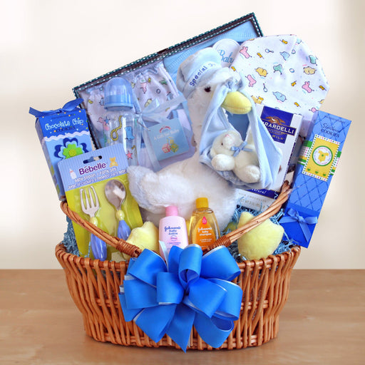 Special Stork Delivery Baby Boy Basket - Chocolate.org