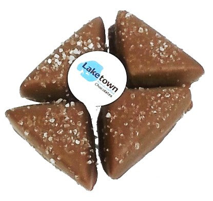 Milk Chocolate Sea Salt Caramels 4pc Box