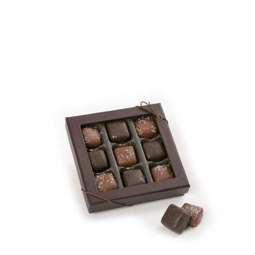 9 Piece Assorted Sea Salt Caramels