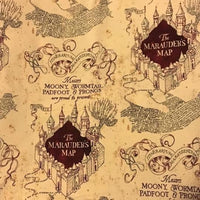 Marauders Map (Slouchy Hat)