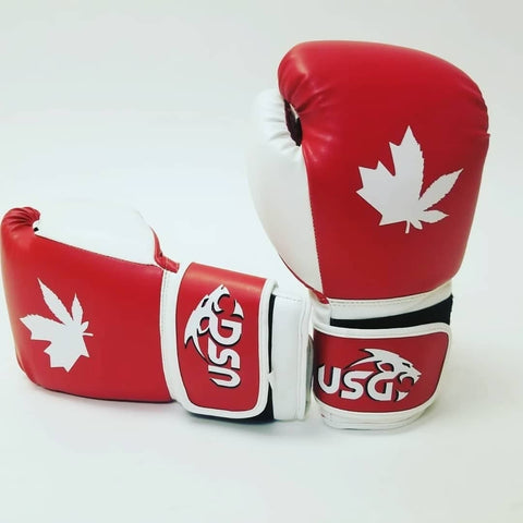 HalfLeaf Boxing/Kickboxing Gloves