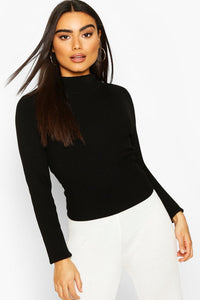 Rib Knit Turtle Neck