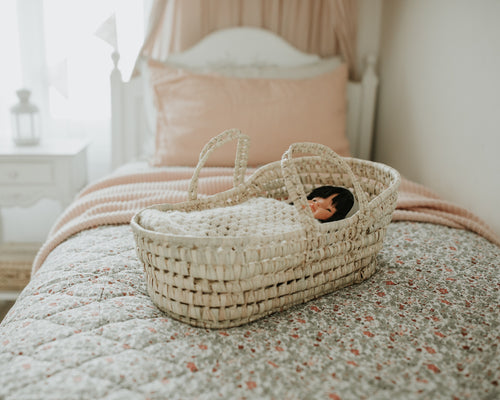 Little Beau Doll Bassinet / Basket