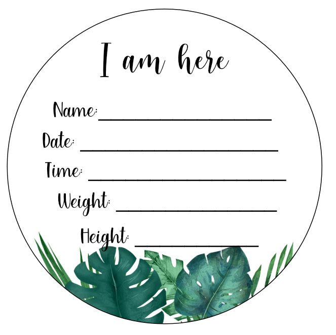 Wood Birth Announcement Disc Plaque Sign Leaf