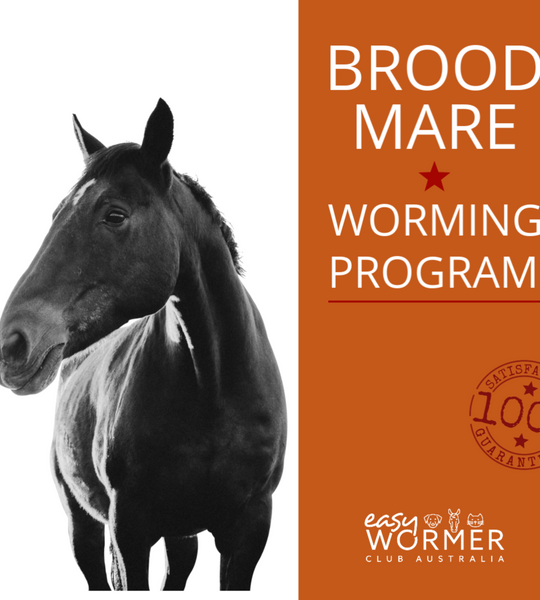 Worming Horses - Broodmare Worm Control Program FREE Delivery Australia