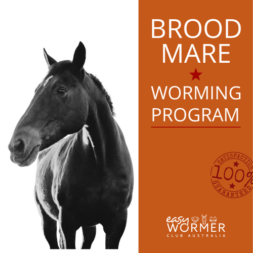 Broodmare Rotational Horse Worming Program
