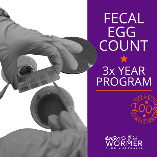 Feacal Egg Count 3x a Year Program For Horses
