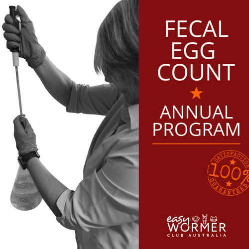 Annual Feacal Egg Count For Horses